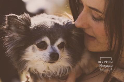 millie-the-dog-photographs-163